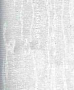 Вертикальные Жалюзи 89мм Вангог1
