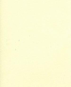 america-02-beige
