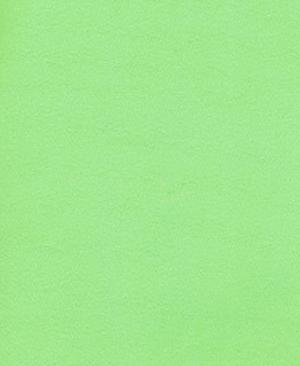 america-45-green